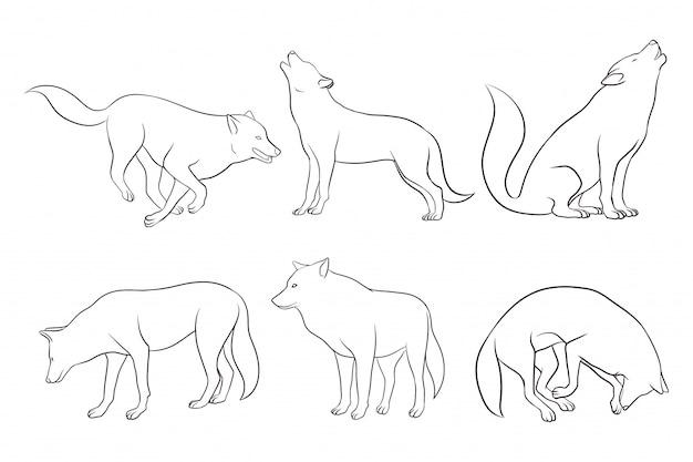 Conjunto de lobo dibujado a mano