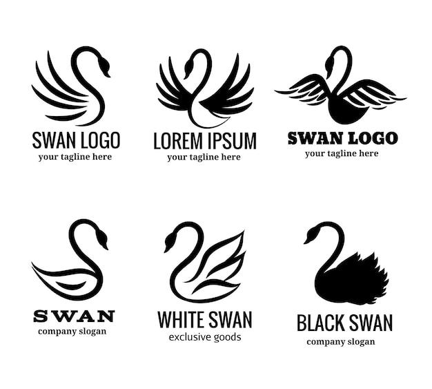 Conjunto de logotipo de cisne de cisne blanco o negro
