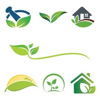 Conjunto de logotipo de ecología de hoja verde