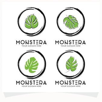 Conjunto de logotipo de la hoja de monstera