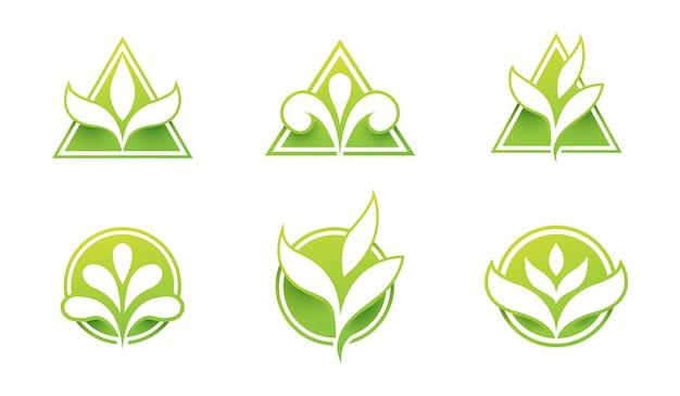 Conjunto de logotipo de la hoja