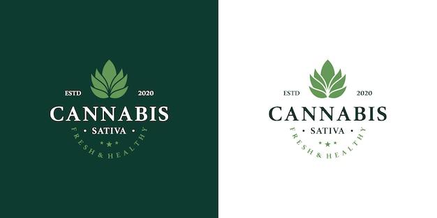 Conjunto de logotipo de marihuana medicinal cannabis