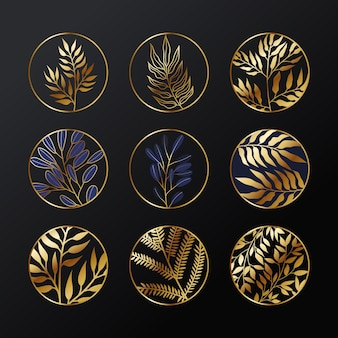 Conjunto de logotipo de planta botánica de oro elegante.