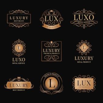 Conjunto de logotipo retro de lujo
