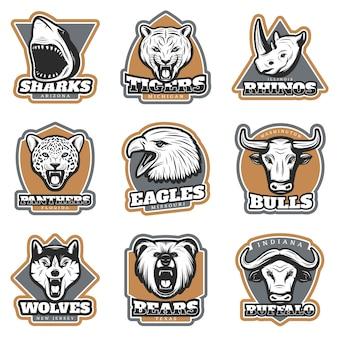 Conjunto de logotipos de animales de deporte de equipo colorido