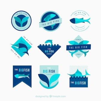 Conjunto de logotipos de peces para empresas