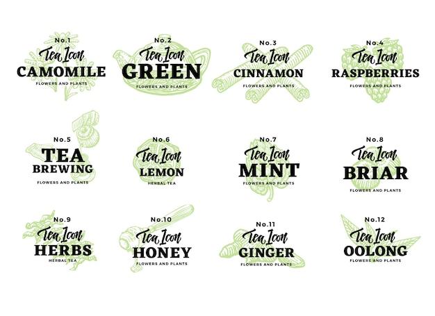 Conjunto de logotipos de té dibujados a mano