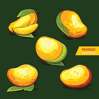 Conjunto de mango con estilo handdrawn
