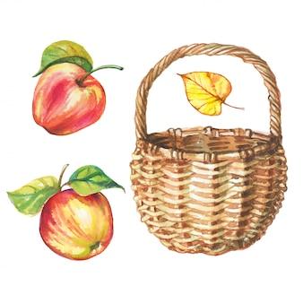 Conjunto de manzanas acuarela y cesta de mimbre.
