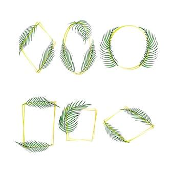Conjunto de marcos de hojas tropicales, colección de hojas exóticas de palma de selva