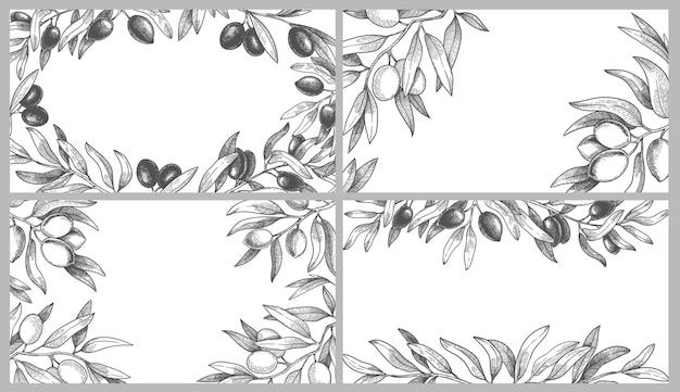 Conjunto de marcos de ramas de olivo grabadas