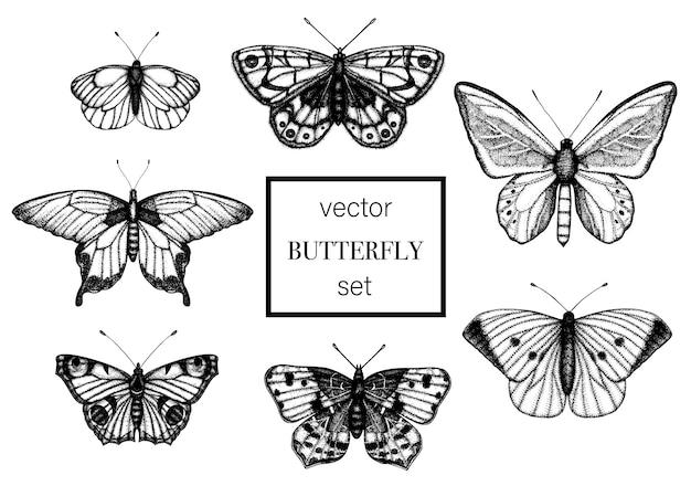 Conjunto de mariposas en blanco y negro dibujado a mano.
