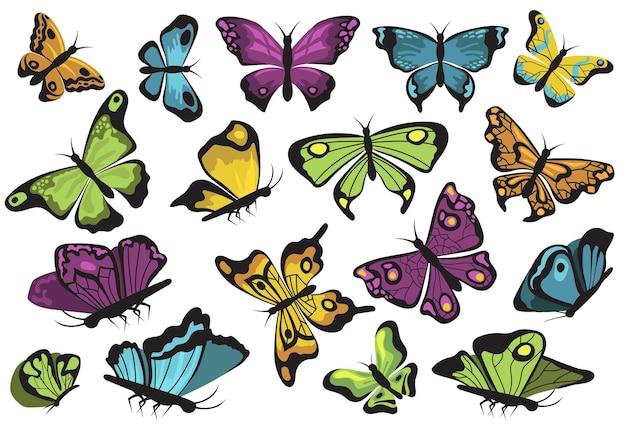 Conjunto de mariposas de colores