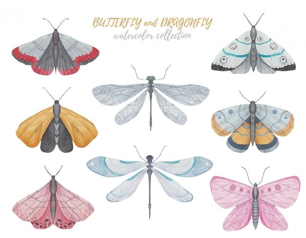 Conjunto de mariposas, libélulas y polillas ilustración acuarela sobre un fondo blanco.