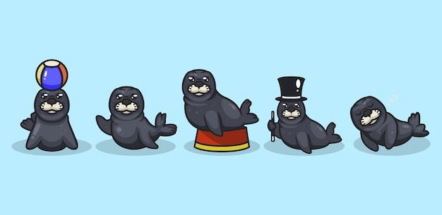 Conjunto de mascota de foca con fondo aqua