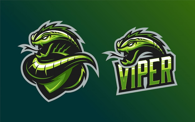 Conjunto de mascota logo viper