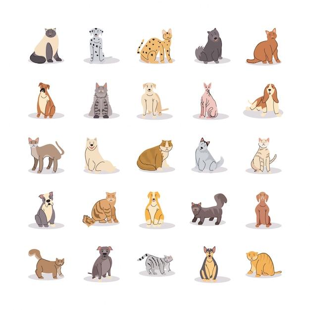 Conjunto de mascotas, diferentes razas de perros y gatos.