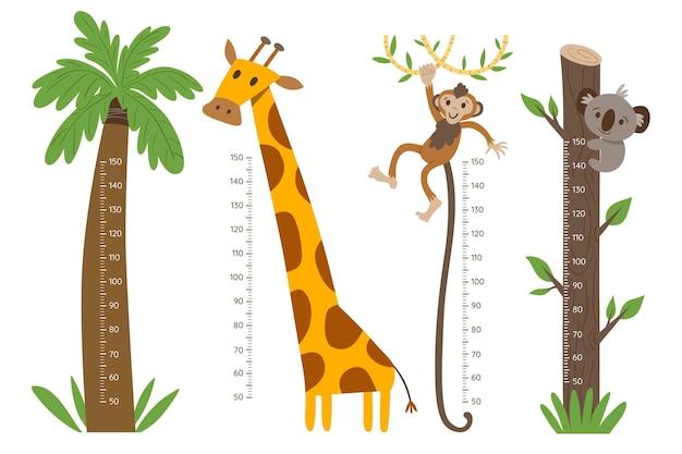 Conjunto de medidor de altura dibujado a mano