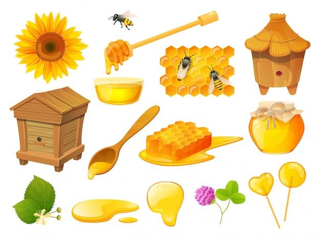 Conjunto de miel, productos apícolas, colmenar de madera, ilustración
