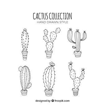 Conjunto moderno de cactus abocetados