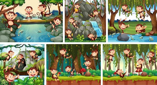 Conjunto de mono juguetón en el fondo de la naturaleza