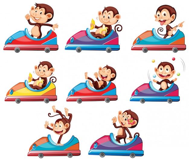 Conjunto de monos montando en coche de juguete
