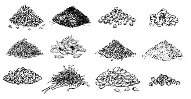 Conjunto de montones de especias