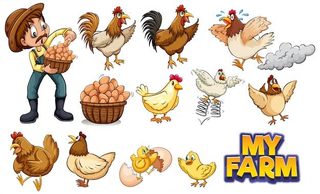Conjunto de muchas gallinas y granjero