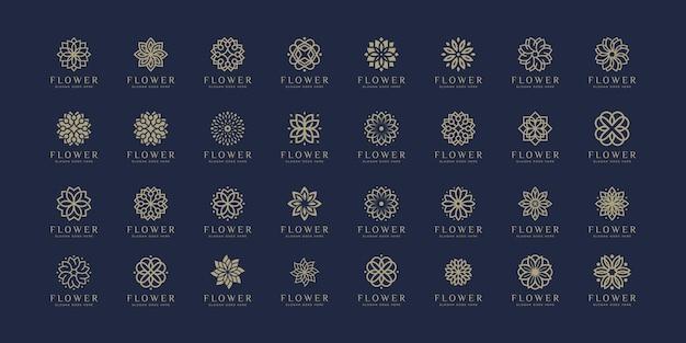 Conjunto de naturaleza de diseño de logotipo de flor de lujo