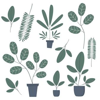 El conjunto de la naturaleza verde.