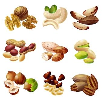 Conjunto de nueces saludables de dibujos animados