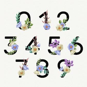Conjunto de números florales acuarela