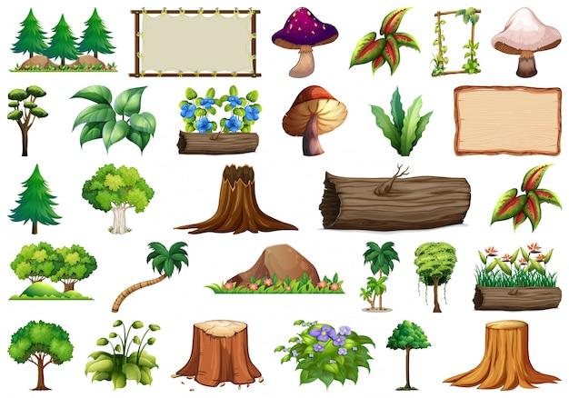 Conjunto de objeto natural