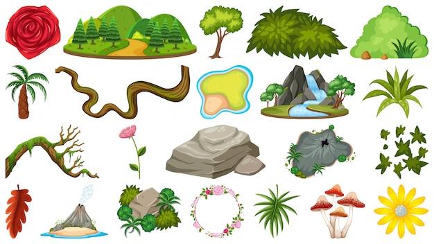 Conjunto de objetos de la naturaleza para la decoración.