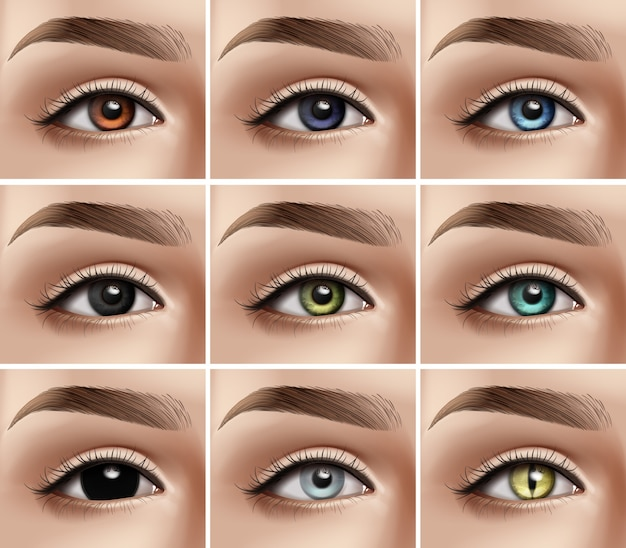 Conjunto de ojos de mujer realistas con diferentes tipos de colores y lentillas decorativas.