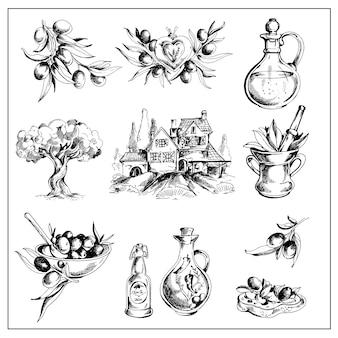 Conjunto de oliva dibujado a mano retro.