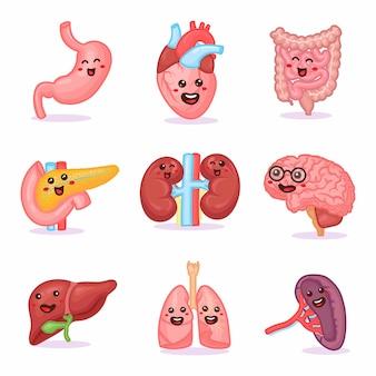 Conjunto de órganos fuertes sanos humanos felices fuertes kawaii lindo. diseño de icono de ilustración de personaje de dibujos animados. aislado sobre fondo blanco