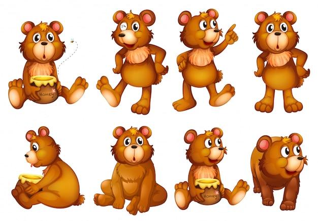Conjunto de osos aislado en blanco