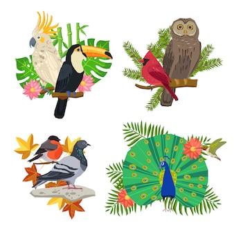 Conjunto de pájaros y flores