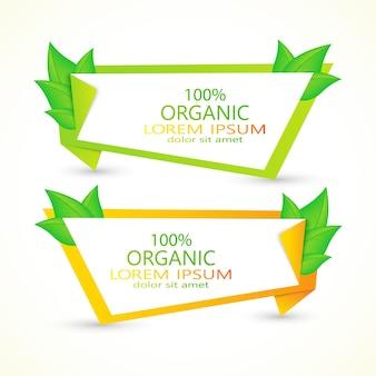Conjunto de pancartas con hojas verdes frescas. diseño ecológico.