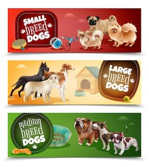 Conjunto de pancartas de razas de perros