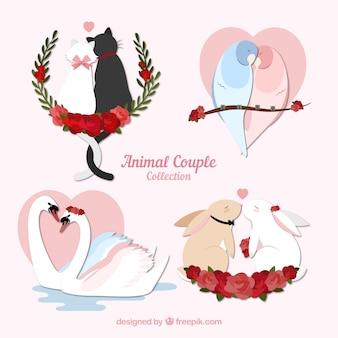 Conjunto de parejas de animales de san valentin