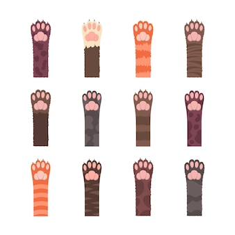 Conjunto de patas de gatos multicolores esponjosos. patrones sin fisuras, patas de gato multicolores aisladas.