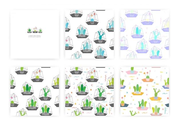 Conjunto de patrones sin fisuras con cactus en terrarios de vidrio. ilustraciones para diseño de papel de regalo.