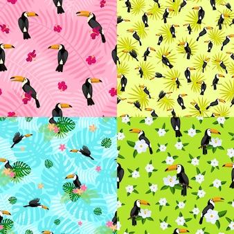 Conjunto de patrones sin fisuras de tucán. estilo de dibujos animados plana