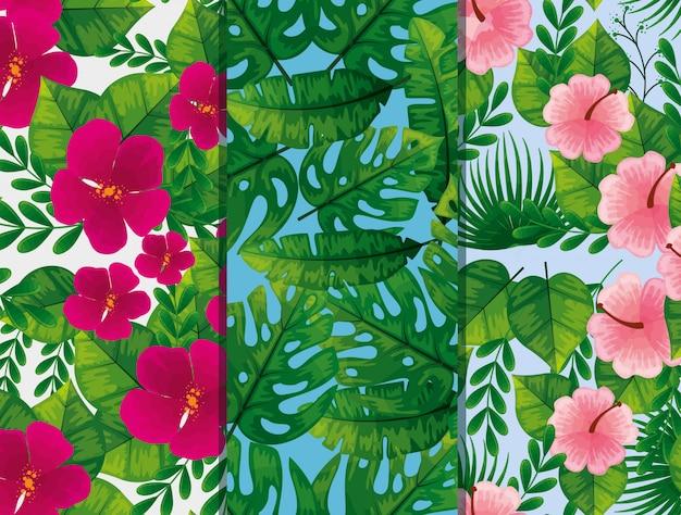 Conjunto de patrones de flores y hojas