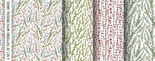 Conjunto de patrones de flores secas de hierba
