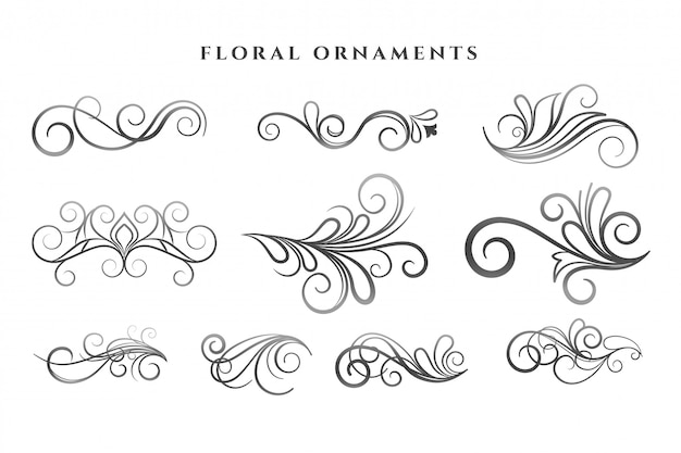 Conjunto de patrones de remolinos de decoración de adornos florales