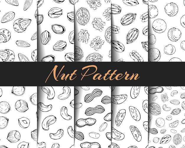 Conjunto de patrones de vectores diferentes tipos de nueces.