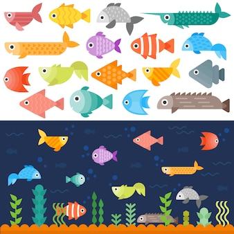Conjunto de peces bajo el agua.